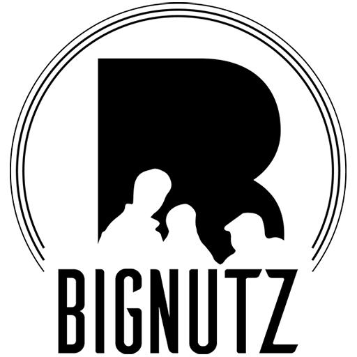 BIGNUTZ_FAVICON_dark